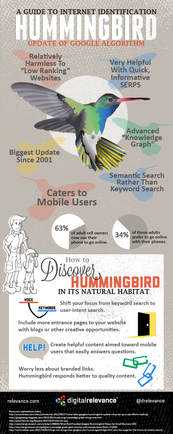 google hummingbird seo guide