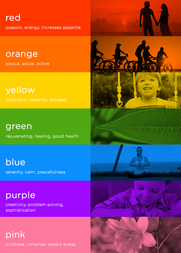 Colour psychology. How does colour affect purchases?